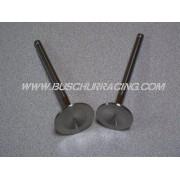 BR Stainless Steel Valves (STD)