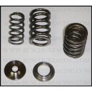 Buschur Spec dual valve spring and retainer set